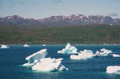 フィヨルドの海面を漂う流氷が極北の旅情を誘います