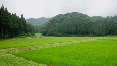 農口尚彦研究所からの眺め